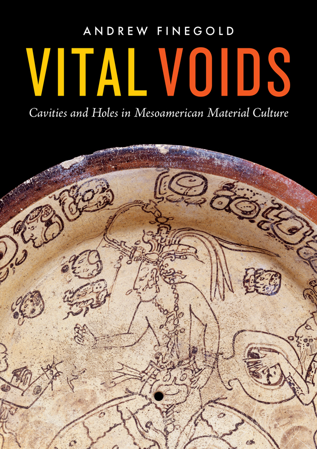 Cover of Vital Voids