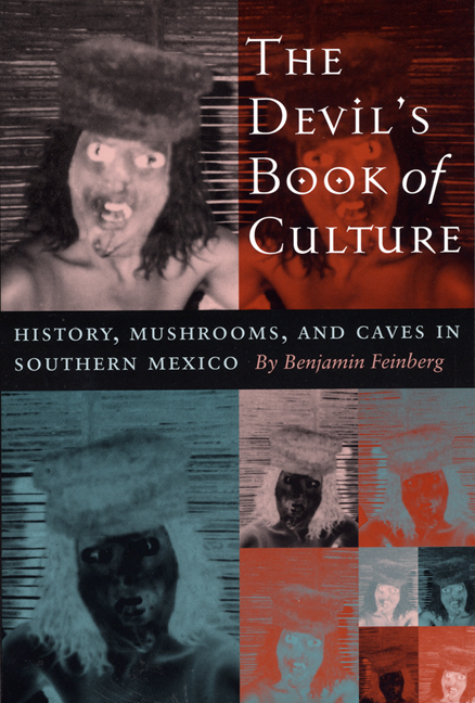 Cover of The Devil's Book of Culture