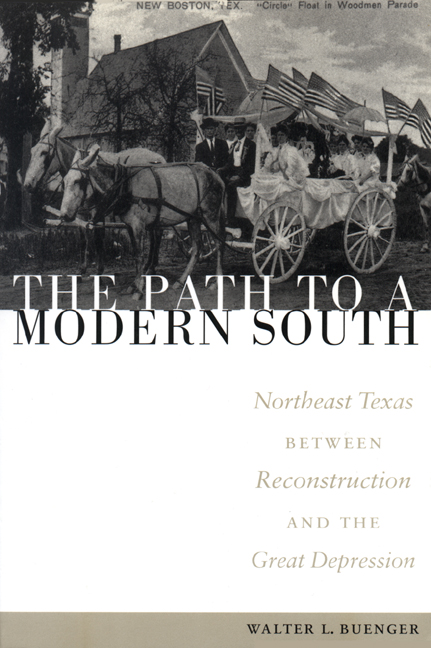 Cover of The Path to a Modern South