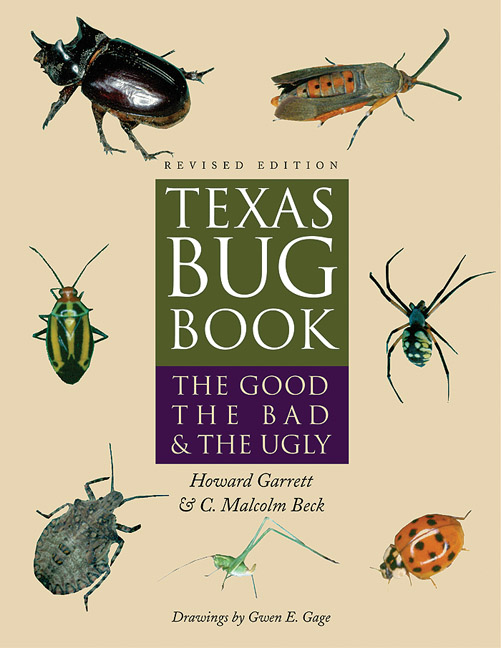 Cover of Texas Bug Book