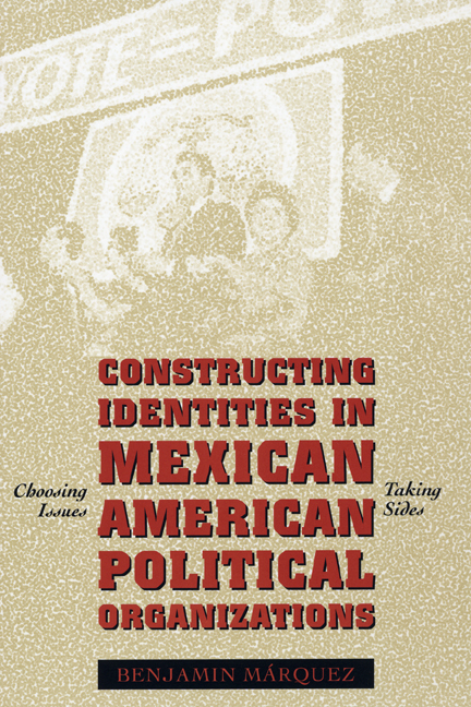 Cover of Constructing Identities in Mexican American Political Organizations