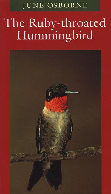 Cover of The Ruby-throated Hummingbird