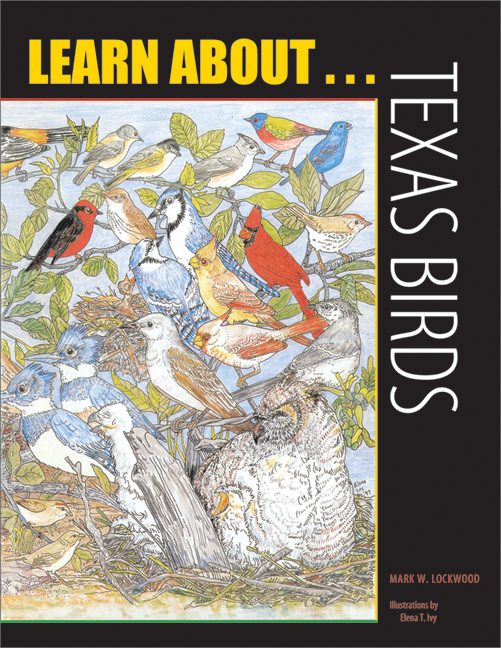 Cover of Learn about . . . Texas Birds