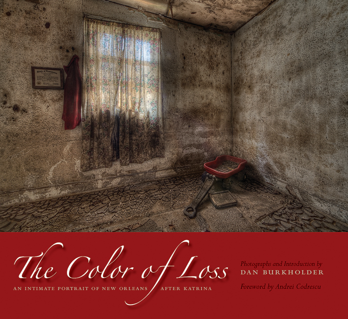 Cover of The Color of Loss
