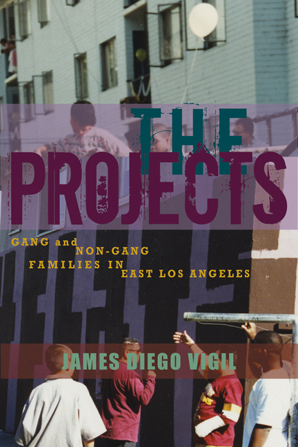 Cover of The Projects