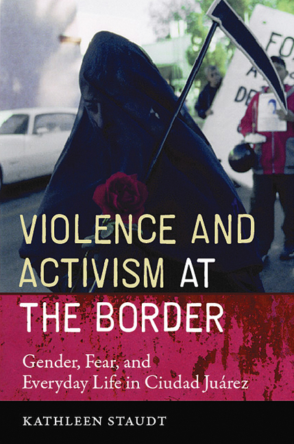 Cover of Violence and Activism at the Border