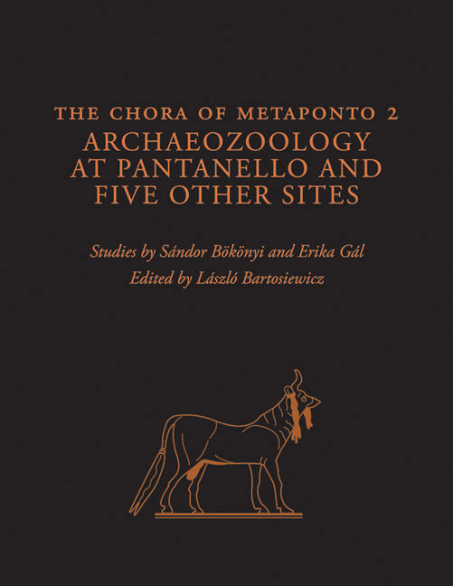 Cover of The Chora of Metaponto 2