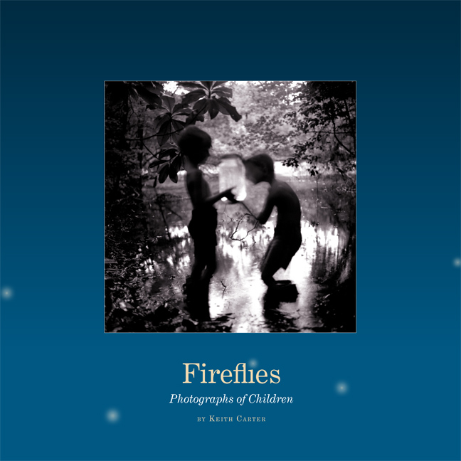 Cover of Fireflies