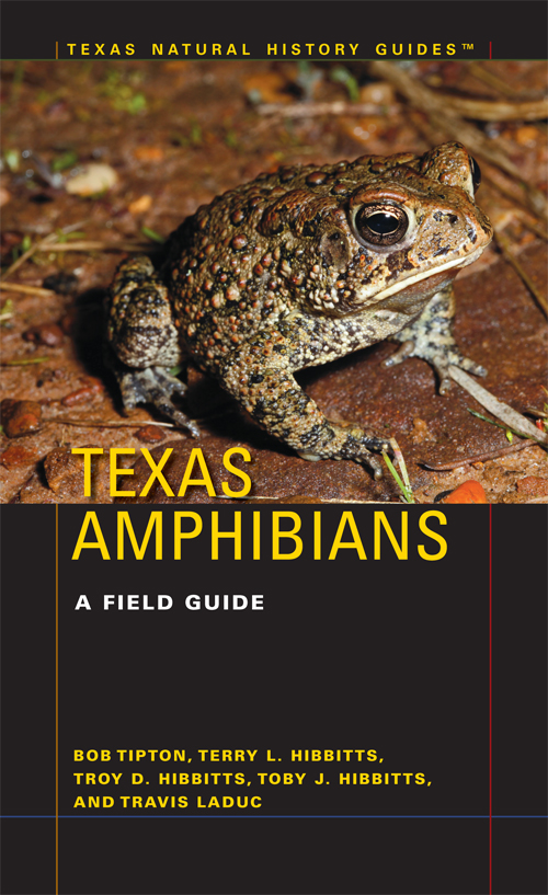 Cover of Texas Amphibians