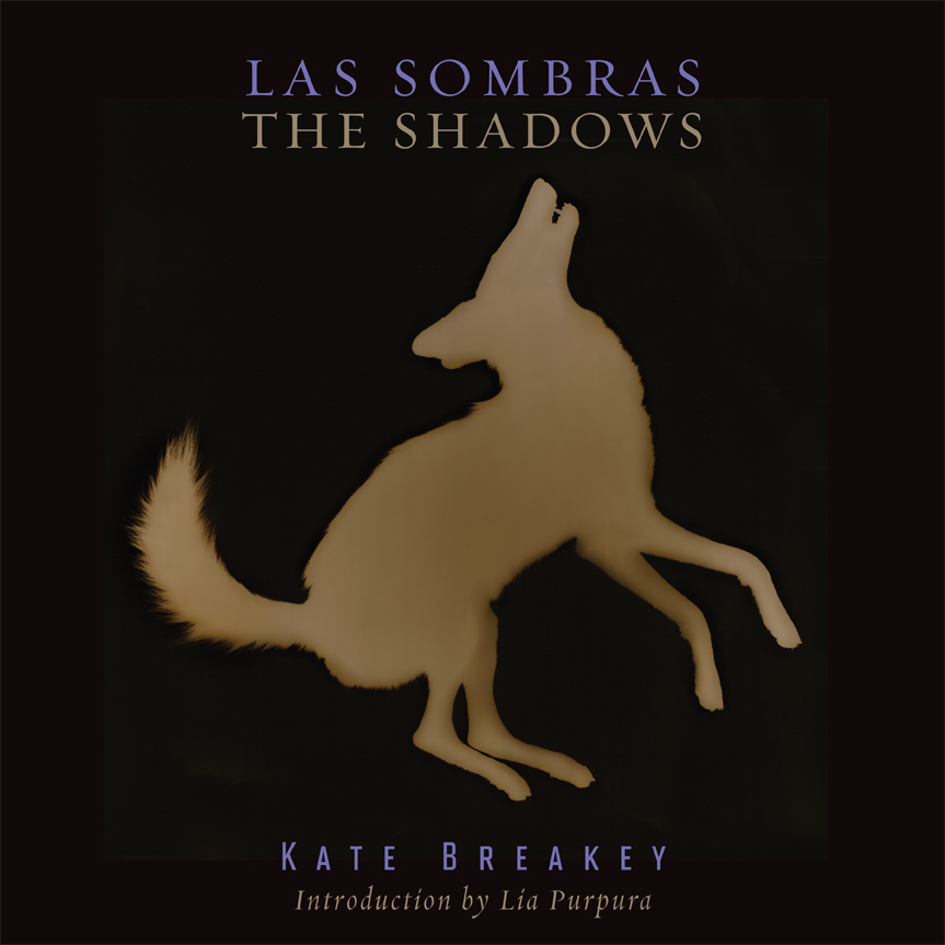 Cover of Las Sombras/The Shadows