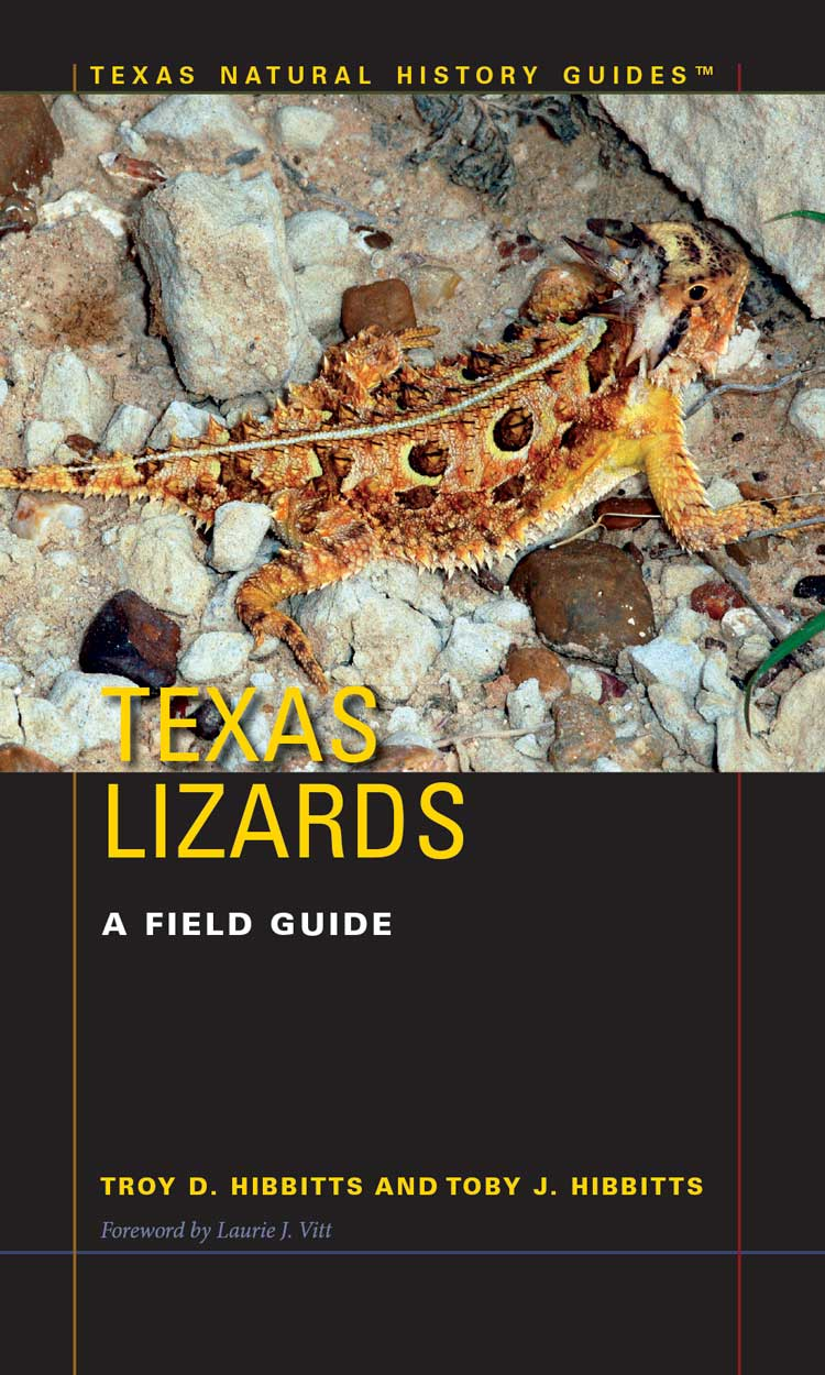 Cover of Texas Lizards