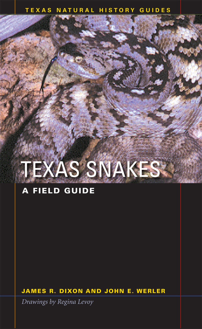 Cover of Texas Snakes