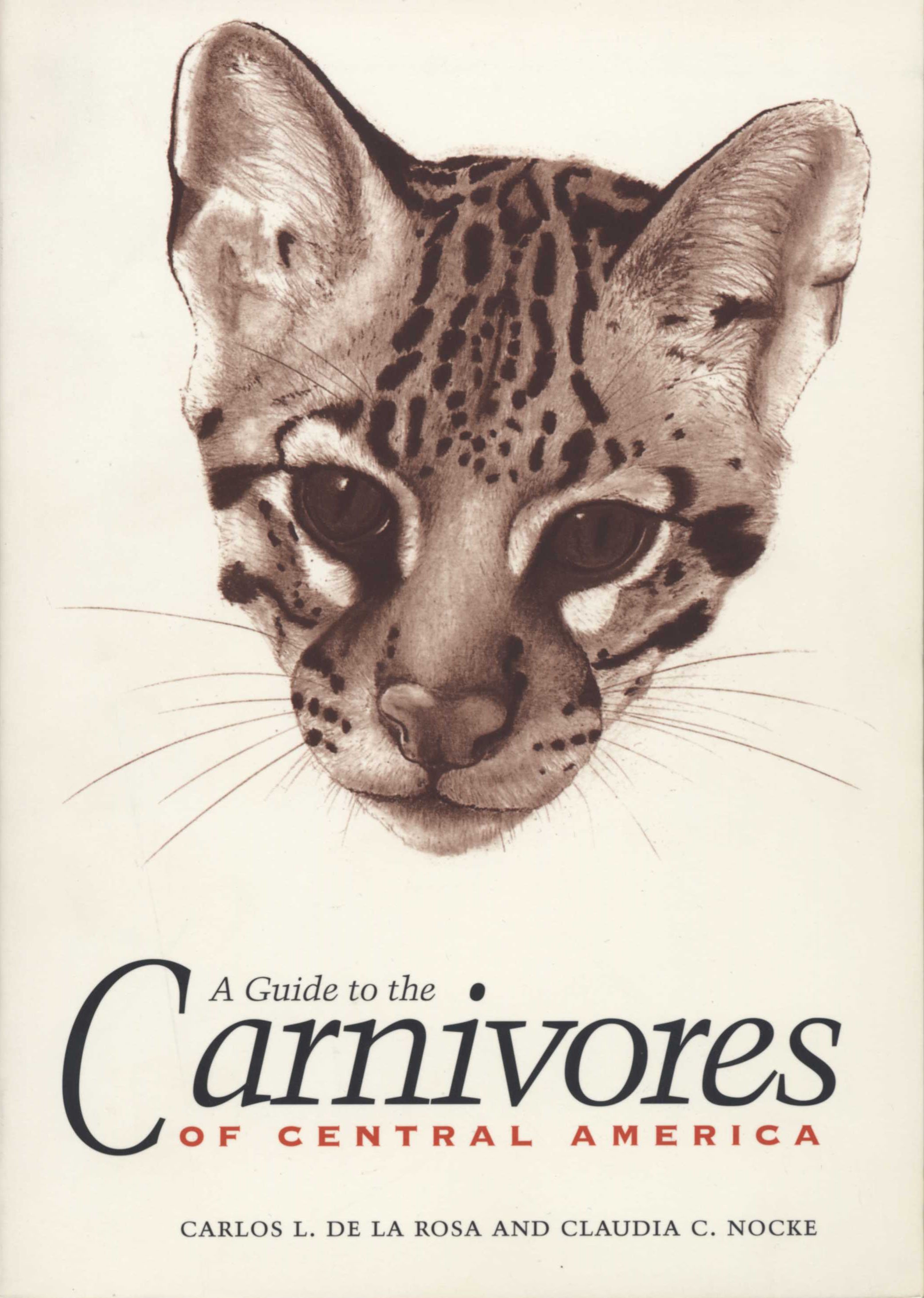 Cover of A Guide to the Carnivores of Central America