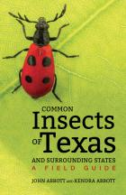 Cover of Common Insects of Texas and Surrounding States