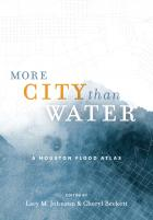 Cover of More City Than Water