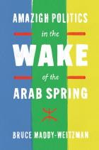 Cover of Amazigh Politics in the Wake of the Arab Spring