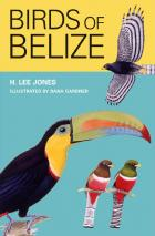 Cover of Birds of Belize