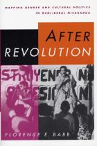 Cover of After Revolution
