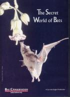 Cover of The Secret World of Bats