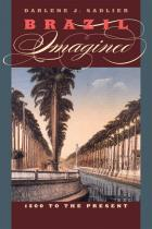 Cover of Brazil Imagined
