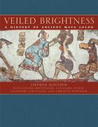 Cover of Veiled Brightness
