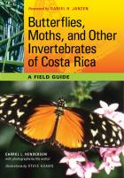 Cover of Butterflies, Moths, and Other Invertebrates of Costa Rica