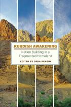 Cover of Kurdish Awakening