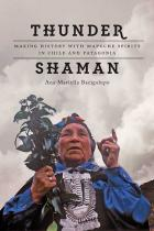 Cover of Thunder Shaman