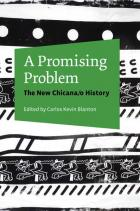 Cover of A Promising Problem