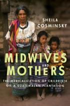 Cover of Midwives and Mothers