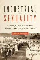 Cover of Industrial Sexuality