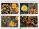 "Content from ""Wildflowers of the Western Plains"""